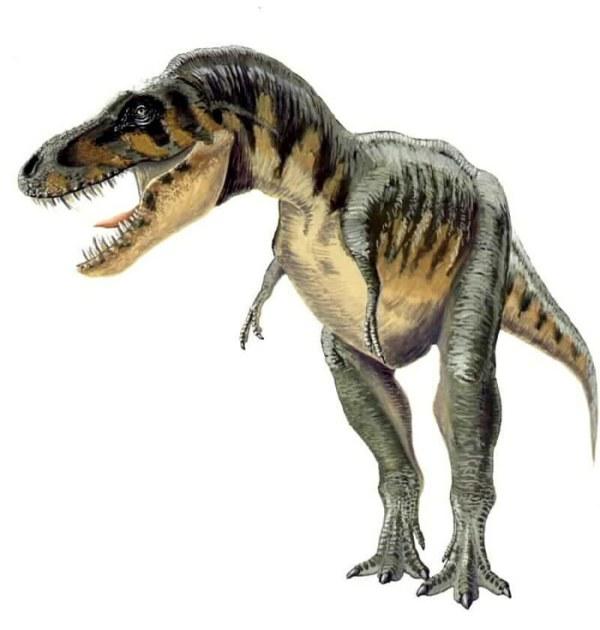 Wikipedia (https://en.wikipedia.org/wiki/Tarbosaurus)